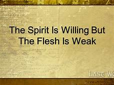 spirit willing flesh weak
